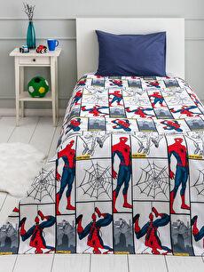 Spiderman Lisanslı Erkek Çocuk Pike