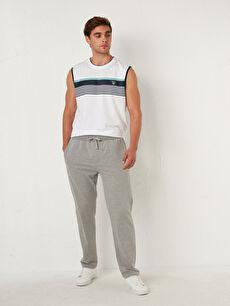Standard Fit Basic Sweatpants