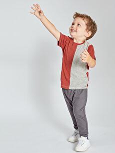 Erkek Bebek Çizgili Pamuklu Tişört
